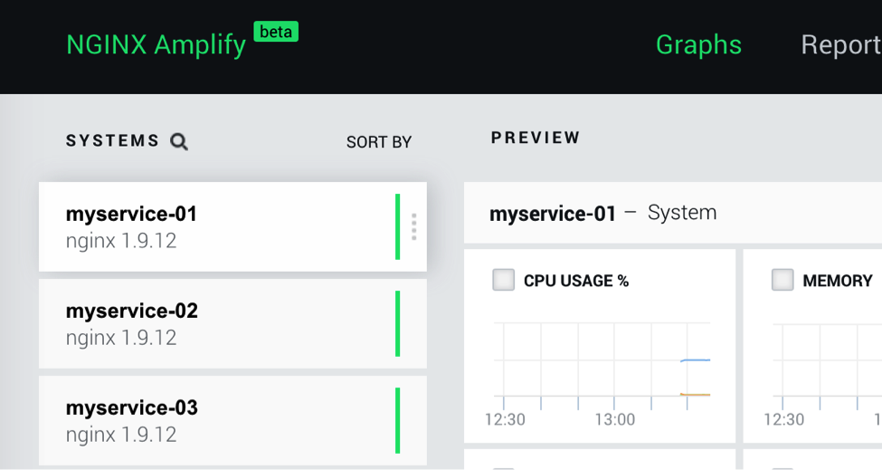 You can assign a human-readable name to a Docker container, to make it easier to identify on the NGINX Amplify dashboard