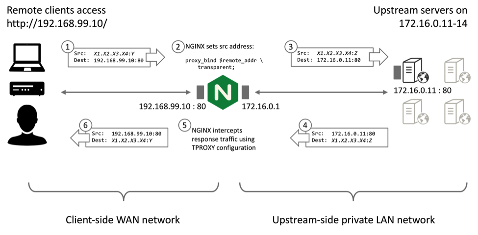 Diagram depicts how TCP packets and UDP datagrams are handled by NGINX Plus when it serves as a transparent proxy to support IP transparency and Direct Server Return