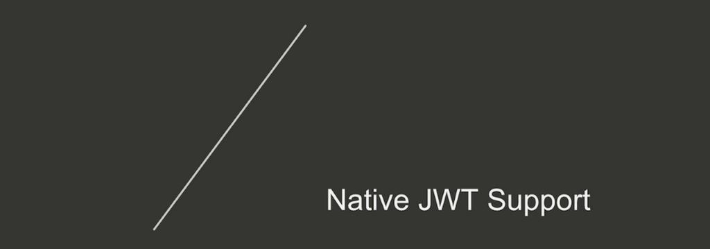 Section title slide for 'Native JWT Support' [NGINX Plus R10 webinar]