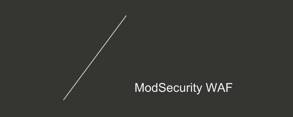 Section title card reading 'ModSecurity WAF' [NGINX Plus R10 webinar]